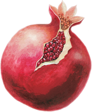 PD-139/1 Pomegranate