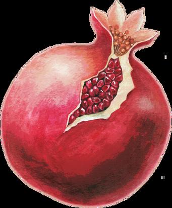PD-139/1 Pomegranate