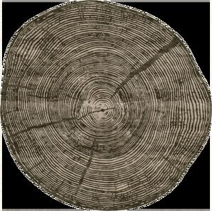 PD-169-4 Tule (Nature)