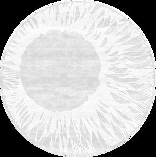 PD-170 Talisman White