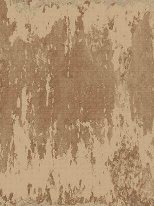 PD-77-3 Rust Film (Association)