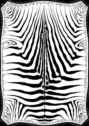 C-002 Zebra Skin