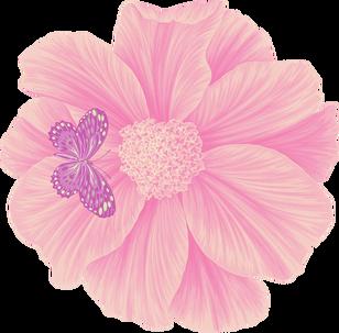 C-105/2 Butterfly Pink (Butterflies)